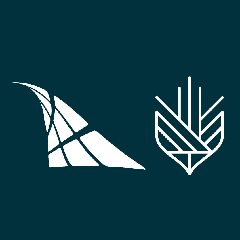 CHIMA and Canadian College of Health Information Management logos